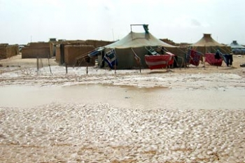 Torrential rains have created havoc and huge damage in refugee camps in the deserts around Tindouf in western Algeria.