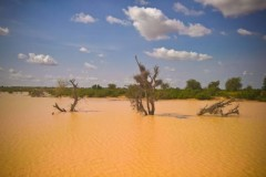 The Sahel with a flooded river at Dogondoutchi, Niger